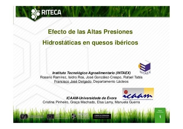 Efecto de las Altas Presiones Hidrostáticas en quesos ibéricos  Instituto Tecnológico Agroalimentario (INTAEX) Rosario Ram...