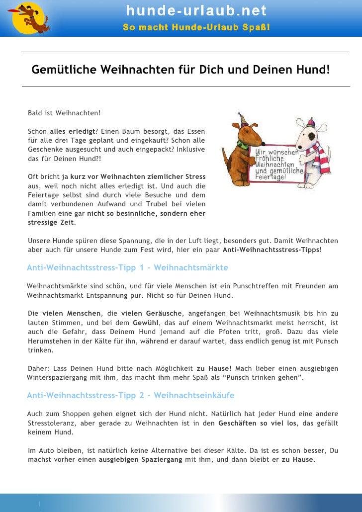 8_Gemütliche Weihnachten für Dich und Deinen Hund!.pdf