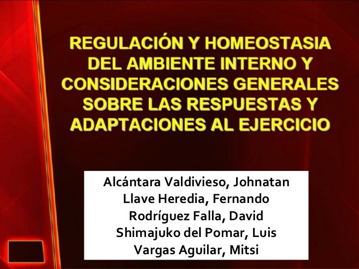 Alcántara Valdivieso, Johnatan Llave Heredia, Fernando Rodríguez Falla, David Shimajuko del Pomar, Luis Vargas Aguilar, Mi...