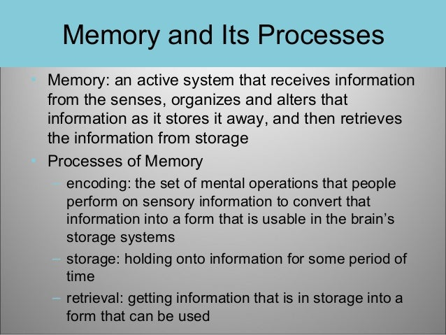 Memory and Its Processes • Memory: an active system that receives information from the senses, organizes and alters that i...