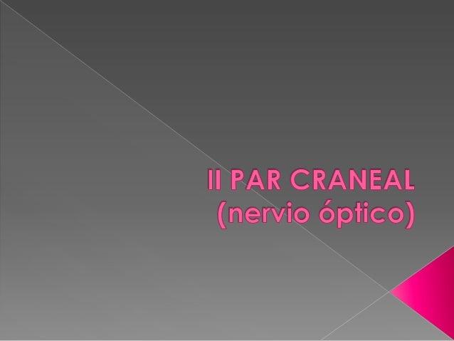 Anatomía: El nervio óptico se origina en las células ganglionares de la retina y después pasa a través de la papila optica...