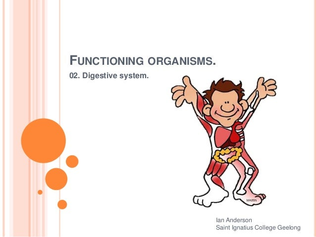 FUNCTIONING ORGANISMS. 02. Digestive system. Ian Anderson Saint Ignatius College Geelong