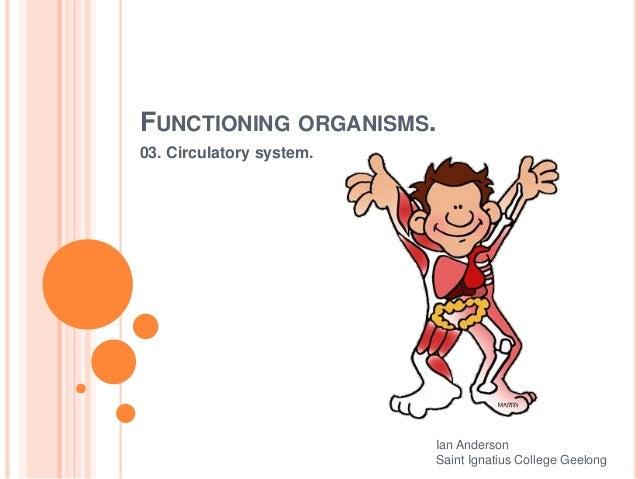 FUNCTIONING ORGANISMS. 03. Circulatory system. Ian Anderson Saint Ignatius College Geelong