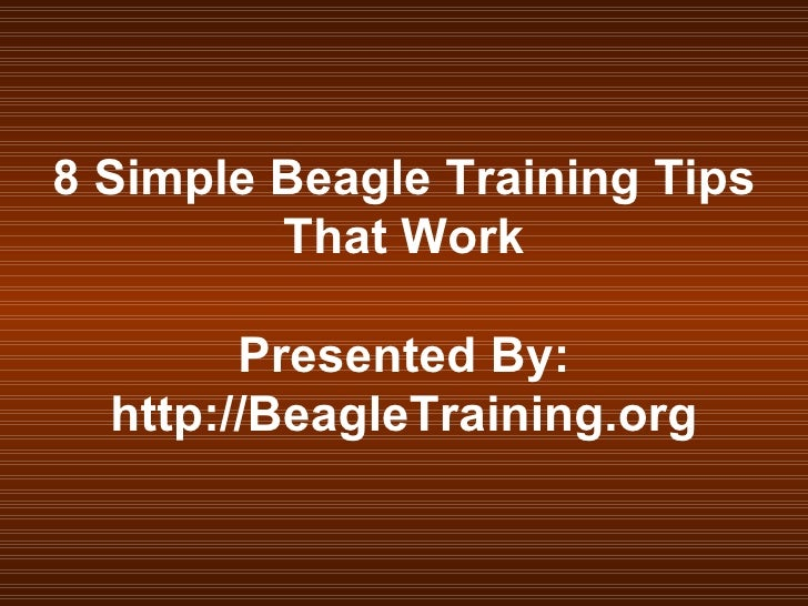 8 Simple Beagle Training Tips That Work Presented By: http://BeagleTraining.org