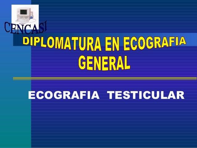 9. ecografia de testiculo y escroto