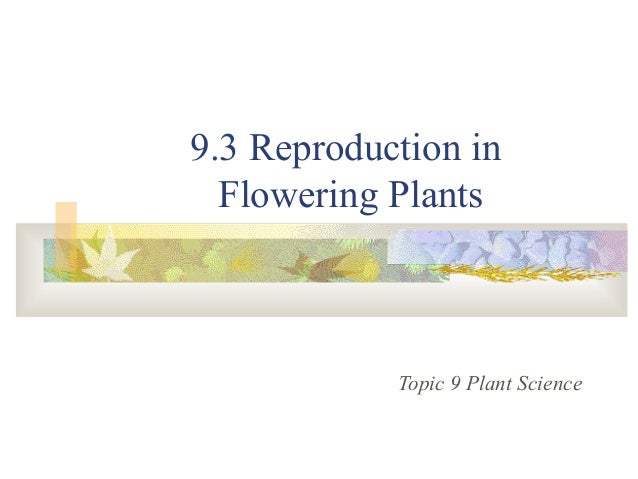 9.3 Reproduction in Flowering Plants Topic 9 Plant Science