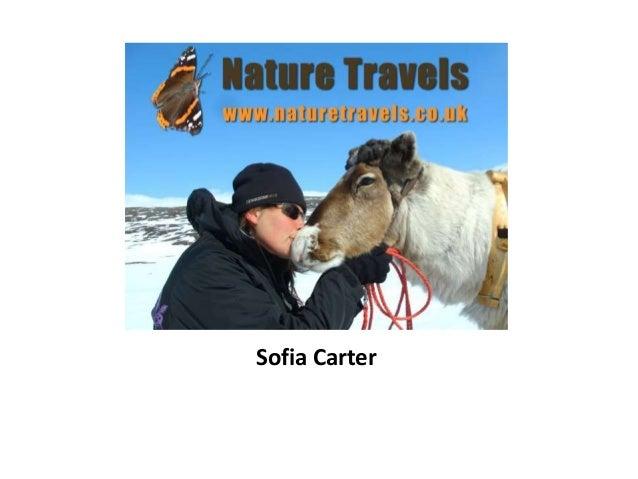 9. naturbasert reiseliv   nature travels presentation trondelag 2