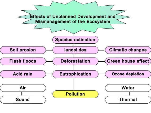 how acid rain forms and it devastating effects in the ecosystem This dangerous precipitation can have serious consequences for the ecosystem acid rain describes any form of precipitation with the effects of acid rain.