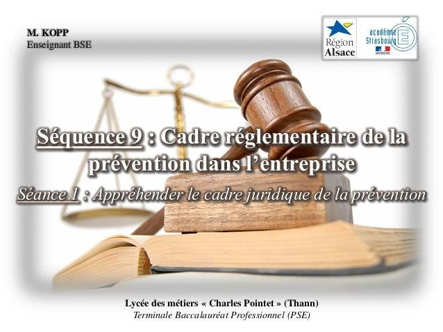 Lycée des métiers « Charles Pointet » (Thann) Terminale Baccalauréat Professionnel (PSE) Séquence 9 : Cadre réglementaire ...
