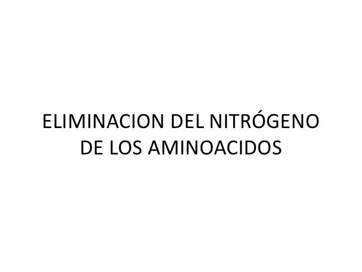 ELIMINACION DEL NITRÓGENO DE LOS AMINOACIDOS<br />