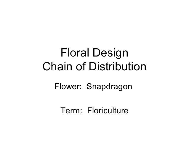 Floral Design Chain of Distribution Flower: Snapdragon Term: Floriculture