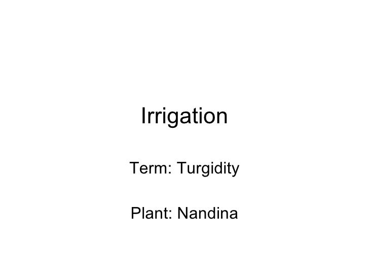 Irrigation Term: Turgidity Plant: Nandina