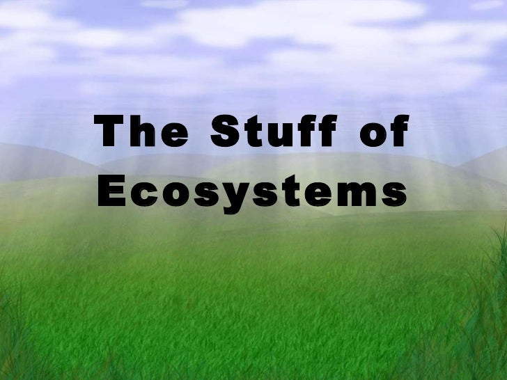 The Stuff of Ecosystems