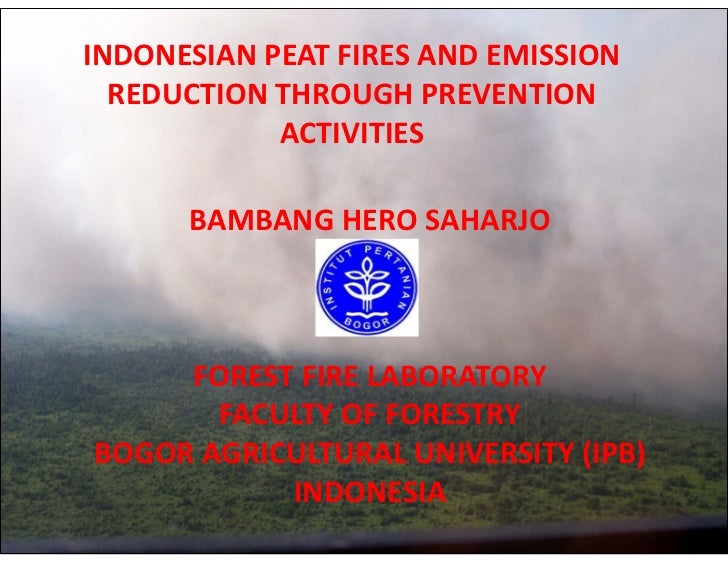INDONESIAN PEAT FIRES AND EMISSION  REDUCTION THROUGH PREVENTION            ACTIVITIES      BAMBANG HERO SAHARJO     FORES...