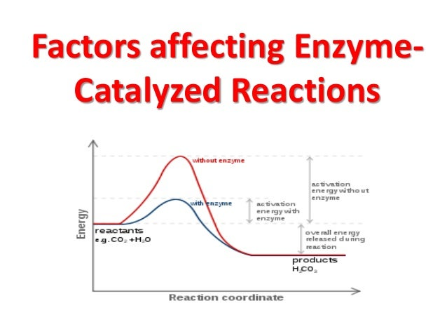 how does ph affect enzyme reactivity At other times, enzymes can by controlled by poisons and contaminants, such as  herbicides there are many factors that can regulate enzyme activity, including.