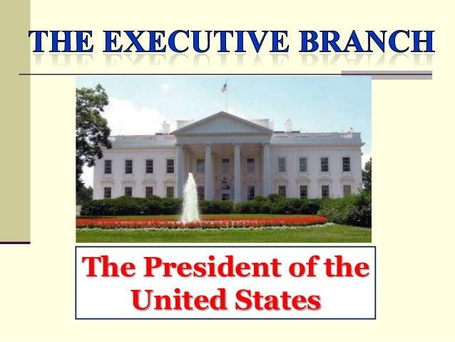 The US Presidency