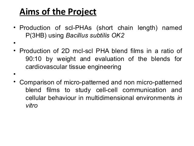 Cinema blend masters thesis