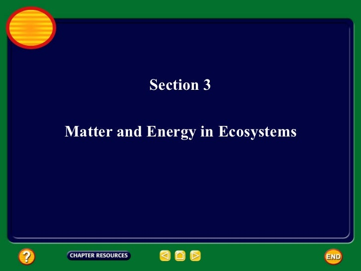 Section 3 Matter and Energy in Ecosystems