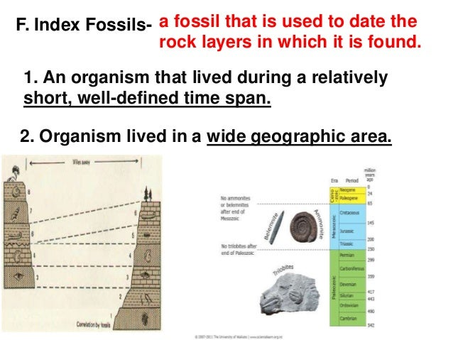 Why are index fossils used for dating rocks