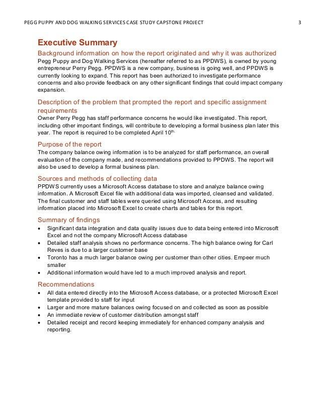 Capstone project report