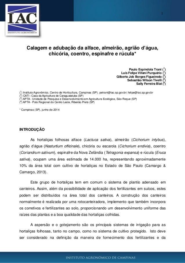 1 Calagem e adubação da alface, almeirão, agrião d'água, chicória, coentro, espinafre e rúcula* Paulo Espíndola Trani ( 1 ...