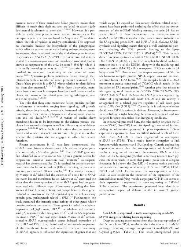golgi apparatus research paper