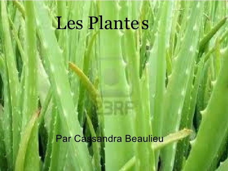 Les Plante   s Par Cassandra Beaulieu