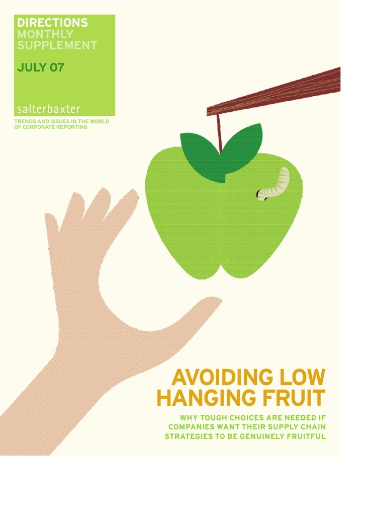 Salterbaxter - Directions Supplement - Avoid the Low Hanging Fruit