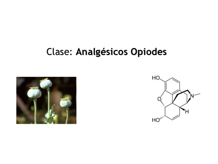 Clase: Analgésicos Opiodes
