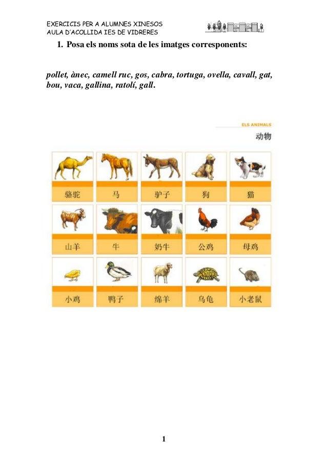Exercicis per alumnes xinesos. Animals.