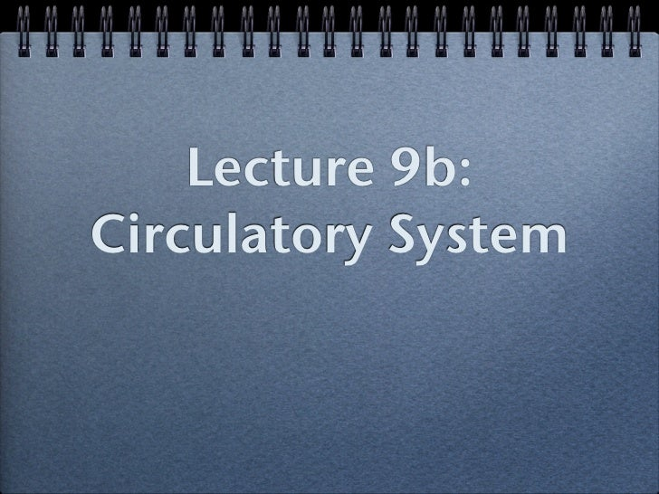 Lecture 9b:Circulatory System