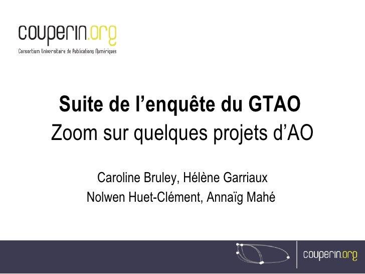 Suite de l'enquête du GTAO  Zoom sur quelques projets d'AO Caroline Bruley, Hélène Garriaux Nolwen Huet-Clément, Annaïg Ma...