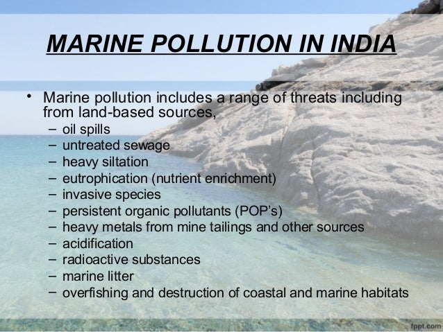 pollution and marine life essay Plastic pollution in our oceans and its negative effects on marine life essay kitchen custom essay сontact us pollution and effects on marine life (essay sample.