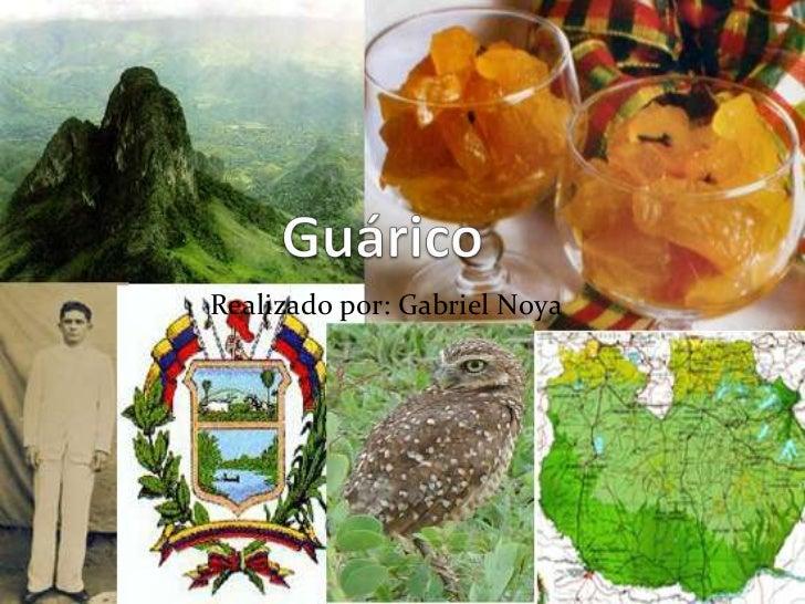 Guárico<br />Realizado por: Gabriel Noya<br />