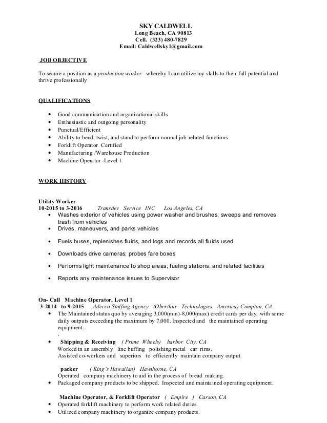 Sky Resume Template + Cover Letter