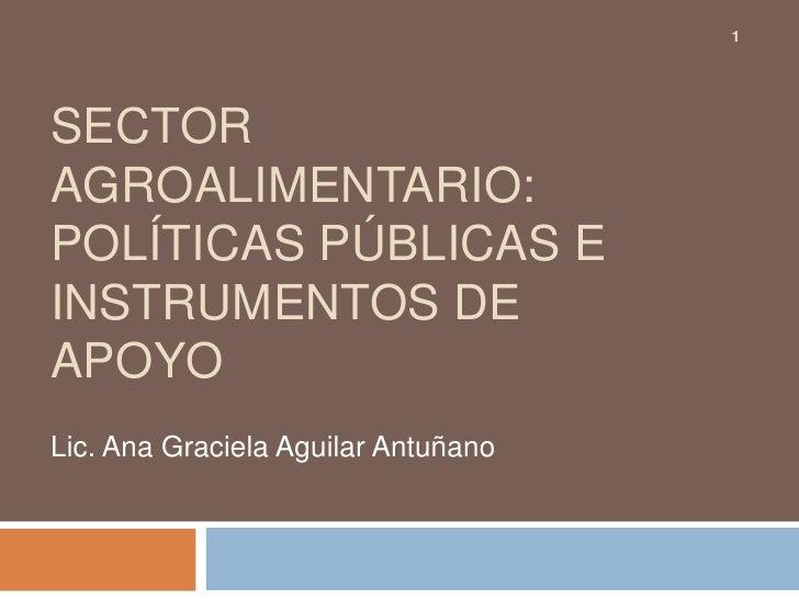 SECTOR AgROALIMENTARIO: POLÍTICAS PÚBLICAS E INSTRUMENTOS DE APOYO<br />Lic. Ana Graciela Aguilar Antuñano<br />1<br />