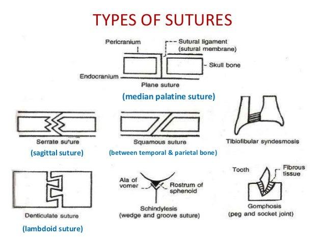SUTURING: THE BASICS - Practical Plastic Surgery