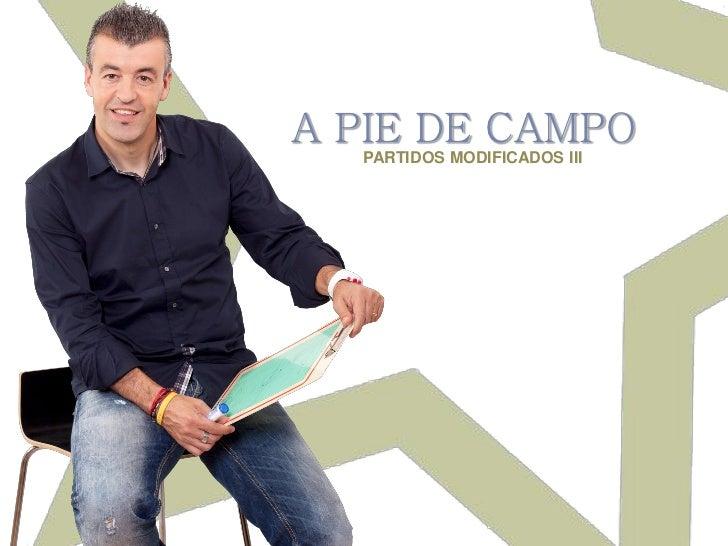 A PIE DE CAMPO  PARTIDOS MODIFICADOS III