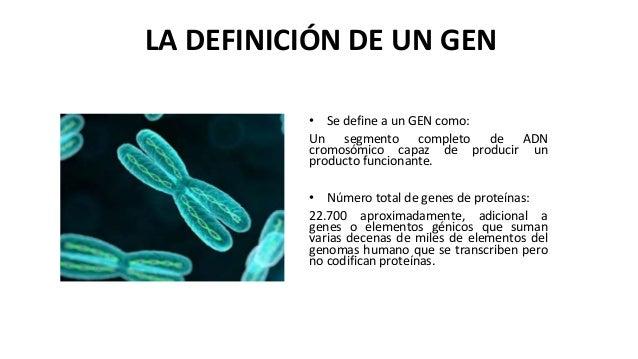 La definici n de un gen for Origen y definicion de oficina
