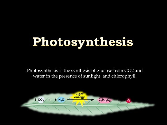 Photosynthesis is the synthesis of glucose from CO2 and water in the presence of sunlight and chlorophyll.