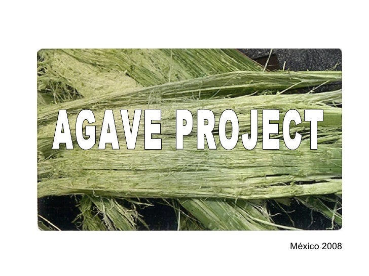 Agave Project Presentation