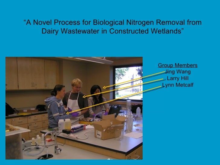"""Group Members Jing Wang Larry Hill Lynn Metcalf """" A Novel Process for Biological Nitrogen Removal from Dairy Wastewater in..."""