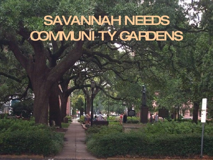 Community Gardens Are Needed In Savannah