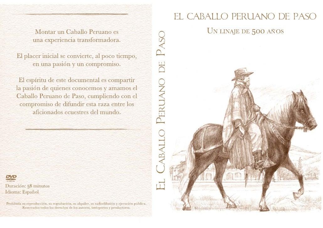 Montar un Caballo Peruano de Paso                                                                            es una experi...