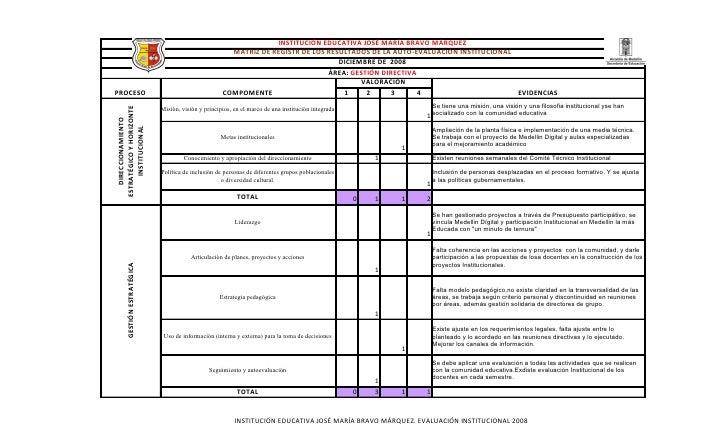 Evaluacion Institucional 2008