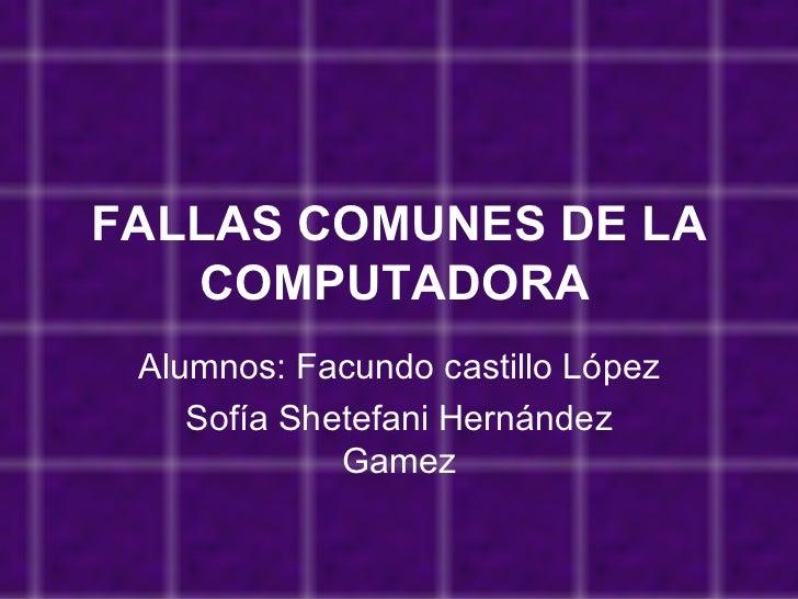 Fallas Comunes De La Computadora