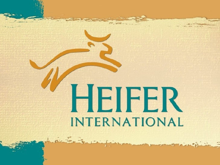 Introduction to Heifer