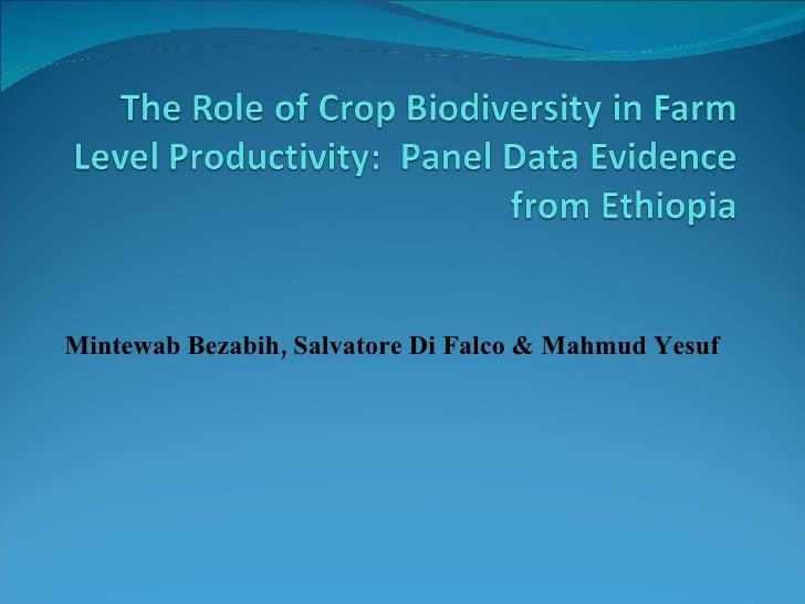 Mintewab Biodiversity And Productivity1