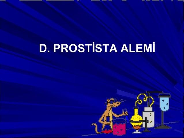 D. PROSTİSTA ALEMİ
