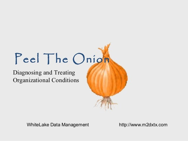 Peel The Onion Diagnosing and Treating Organizational Conditions WhiteLake Data Management http://www.m2dxtx.com